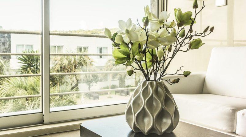 pokojové stálezelené rostliny